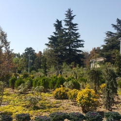 Parques em Teerã